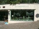 Blumenecke Suedtirol_6