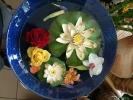Blumen Suedtirol_8